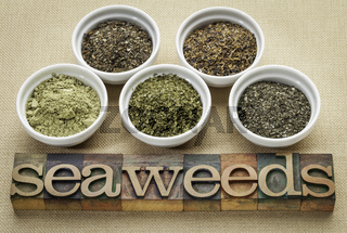 seaweeds - diet supplements