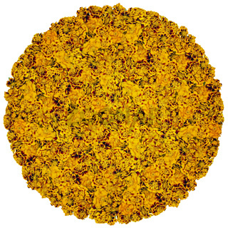 Big ball from orange flowers