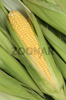 Maiskolben auf Blättern