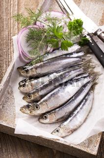 anchovis