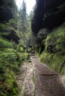 Lattengrund in the area of the Schrammsteine, near Bad Schandau, Sachsische Schweiz, Saxony, Germany