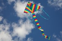 Kite Flying Bright Colours