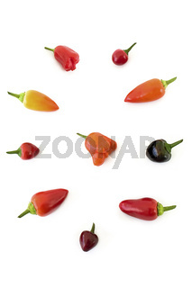 Chilisorten - Capsicum