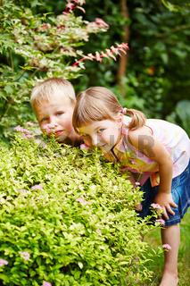 Kinder spielen Verstecken im Garten