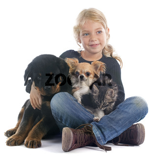 child and dogs