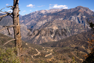 King's Canyon California Sierra Nevada Range Outdoors
