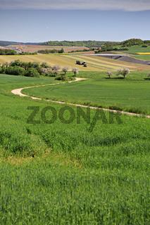 rural lansdscape near Coburg