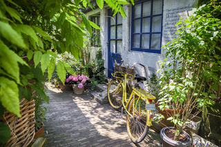 summer street with bike