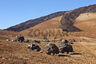 Teide Eier oder Lavakugeln im Teide Nationalpark, Teneriffa