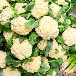 Fresh organic cauliflower background. Vegetables food