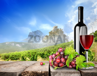 Bottle wine and vineyard