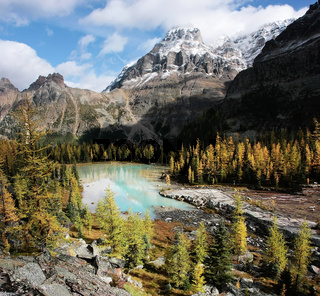 Mount Huber and Opabin Plateau, Yoho National Park, Canada