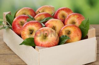 Äpfel in Kiste im Herbst