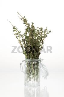 Frischer Thymian in Glasbehältnis vor neutral weißem Hintergrund