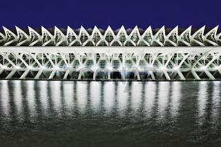 Naturwissenschaftsliches Museum - Museo de las Ciencias Prince Felipe, Valencia, Spanien