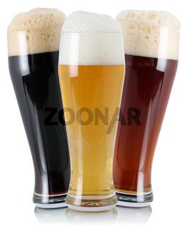 Verschiedene Biere im Glas