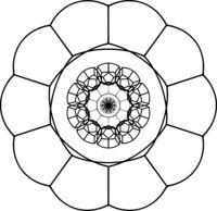 Complicated-geometrical-vector-contour-of-floral-mandala