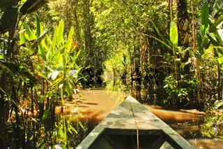 Amazon Basin, Tambopata National Park, Peru, boat