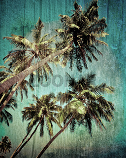 Grunge tropical background with coconut palm tree.