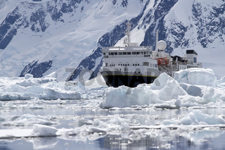 big blue tourist ship in the ice in the background of the Antarctic Peninsula