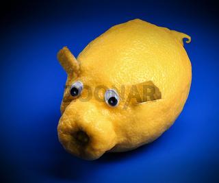 Zitronenschwein
