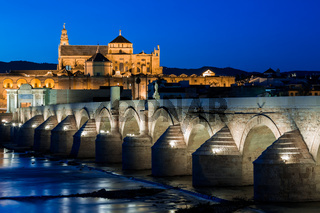Mezquita and roman bridge
