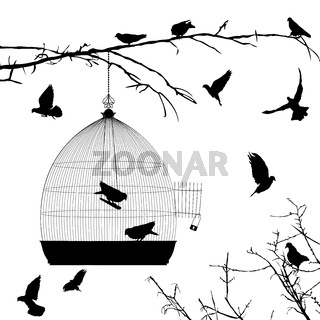 Birds silhouettes and bird cage