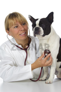 Tierärztin mit Hund