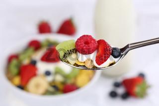Früchte Müsli auf Löffel zum Frühstück