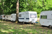 forest trailer