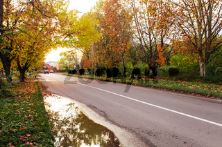 Autumn landscape with road