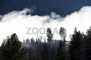Nebel zieht über einen Bergkamm
