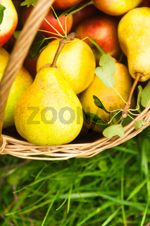 Apples and peaches on grass