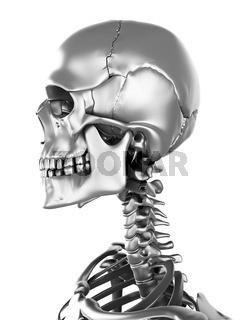 3d rendered illustration of a metal skeleton