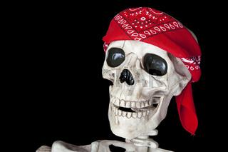 Biker Skeleton