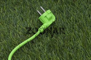Rasen und grünes Stromkabel