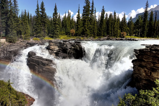 Wasserfall in Kanada, Athabasca Fall