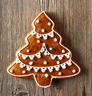 Christmas homemade gingerbread cookie