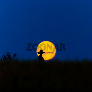 Frau im Mond viereck