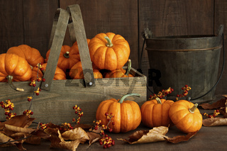 Small pumpkins in wooden box with leaves