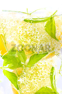 Elderberry flower drink with  lemon