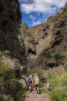 Walkers on the pathway through the Masca barranco