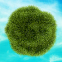 Eco Green Grass Sphere on Background Blue Sky. Ecology Concept. 3D illustration