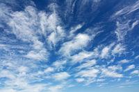Federwolken am blauem Himmel