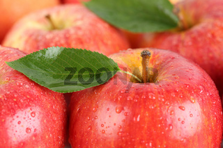 Rote Äpfel Früchte mit Blatt