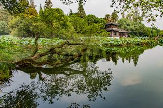 HANGZHOU CHINA WESTSEE