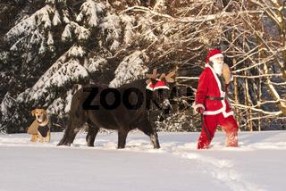 Weihnachtsmann mit Pony und Hund