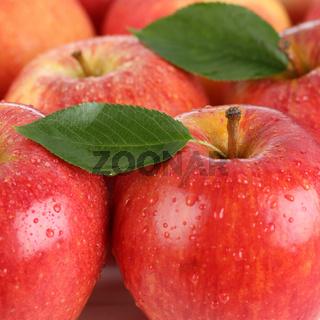 Rote Apfel Früchte mit Blatt