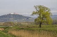Landschaft bei Motovun in Istrien