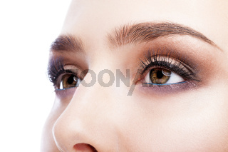 emale eye zone and brows with day makeup